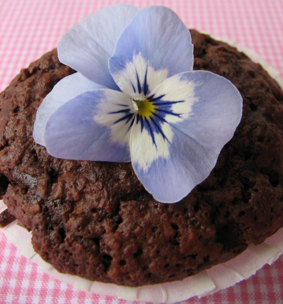 Kokosmuffins med chokolade