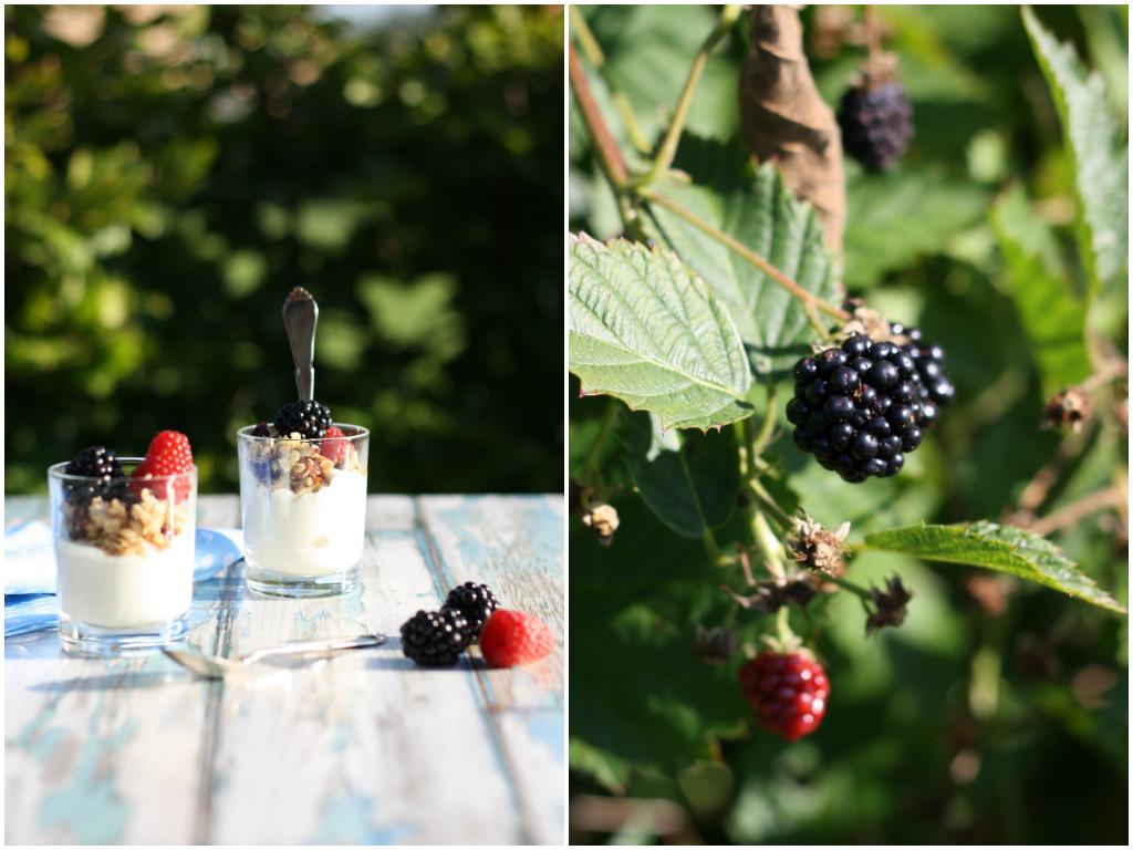 Yoghurt, musli og bær